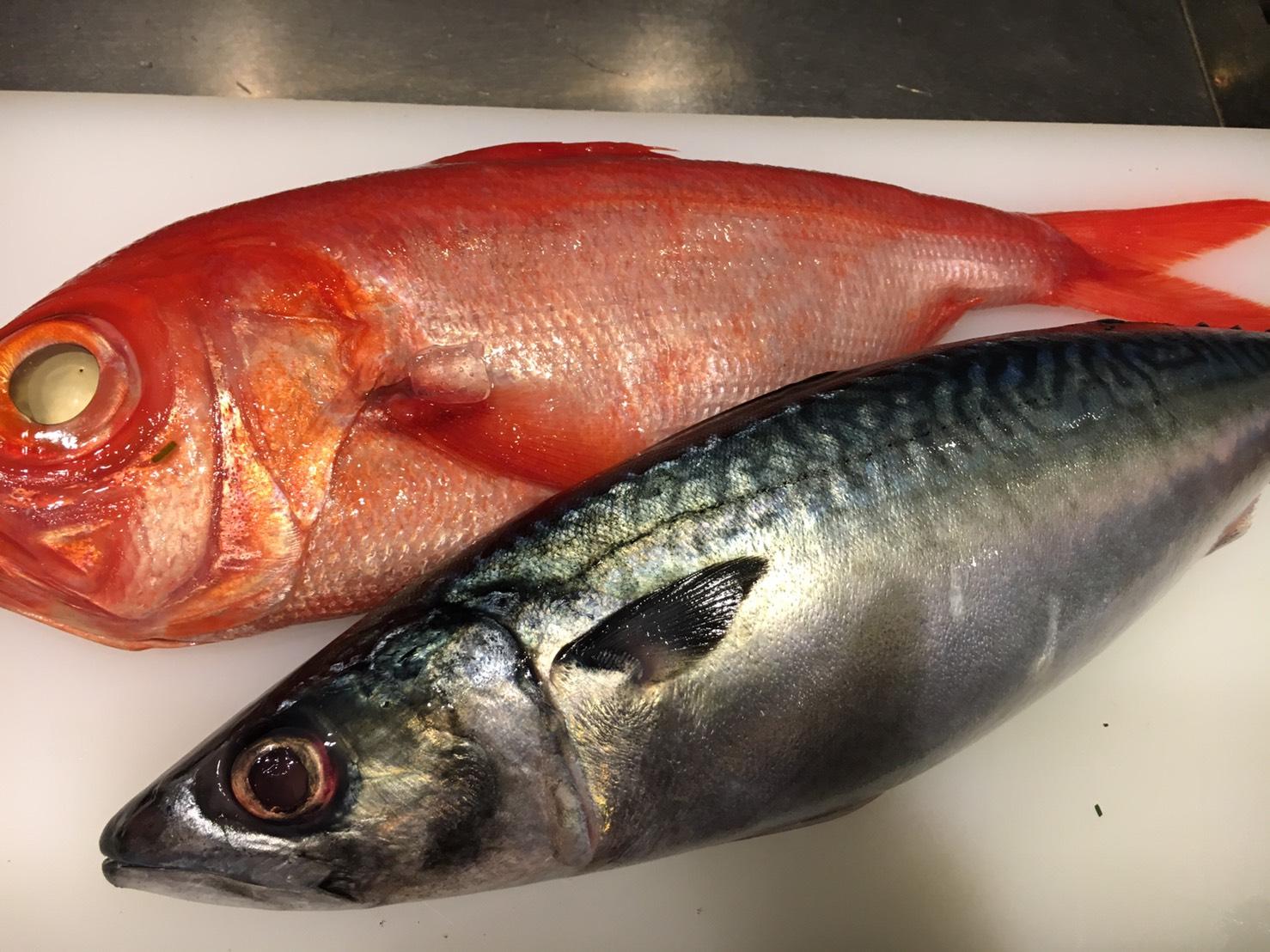 気仙沼の真鯖と長崎の金目鯛