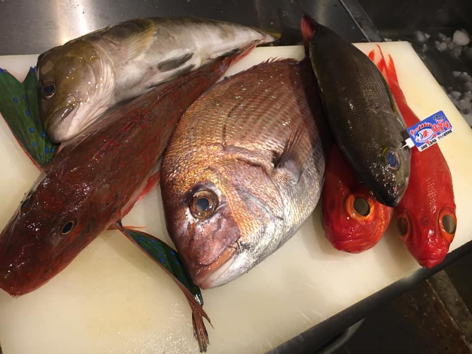 本日入荷のお魚